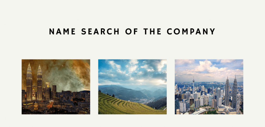 Name Search of the Company